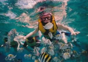 Volume color: liquid (snorkelers)